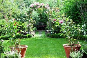 Зелень в романтическом стиле