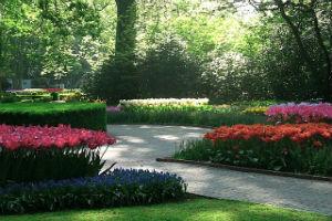 Дорожки в голландском саду