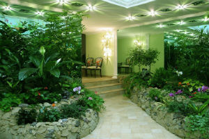 10 способов озеленения интерьера