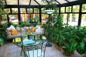 10 вариантов исполнения озеленения в квартире