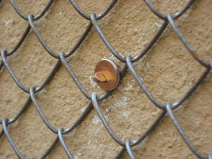 штукатурка армированная сеткой-рабицей