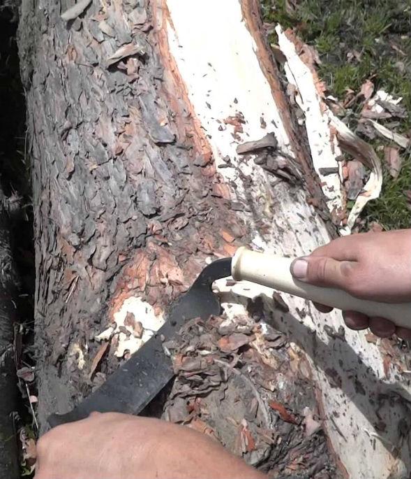 Окорка пеньков для кладки cordwood скобелем