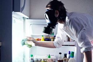 Причины и способы устранения неприятных запахов в холодильнике