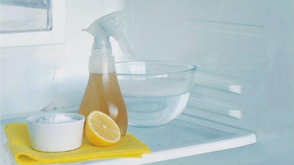 Народные способы удаления неприятных запахов в холодильнике